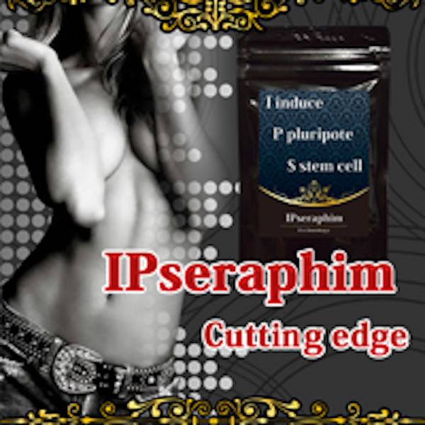 アイピーセラフィム,IPseraphim
