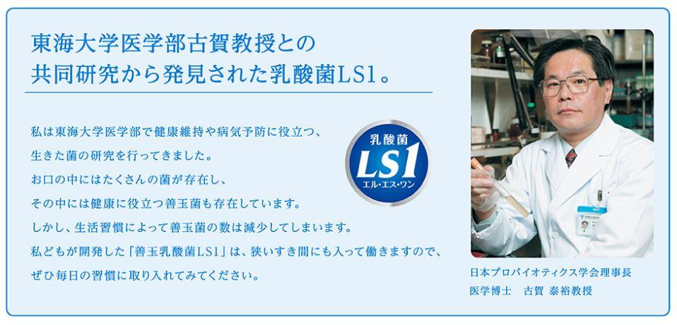 乳酸菌LS1