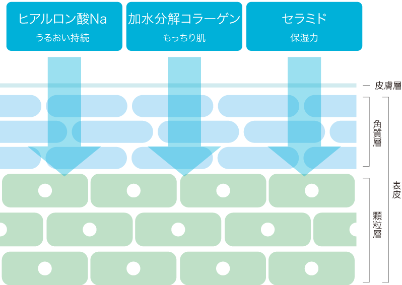 qniur Botanical Moisture Lotion(クニュール ボタニカルモイスチャーローション)